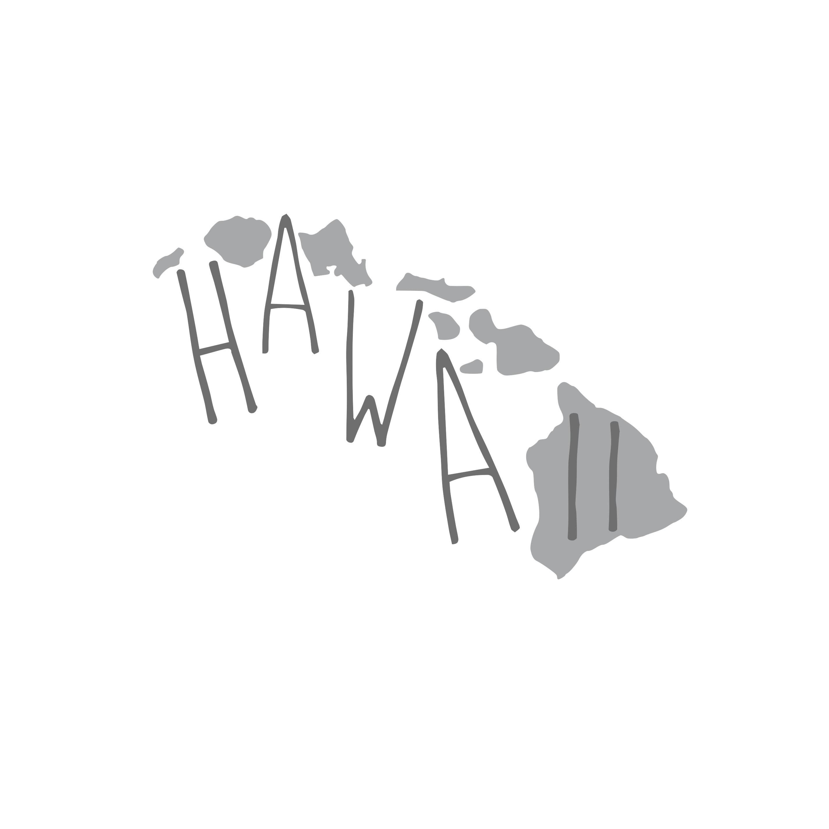 8101 Hawaii State w/ Words