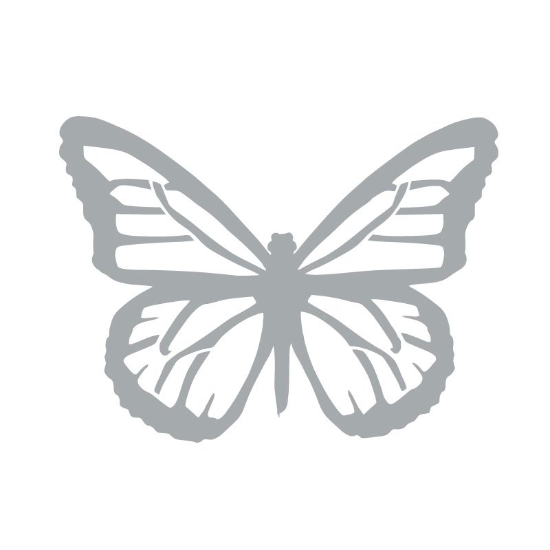 2053 Butterfly Image